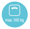 max. 100 kg